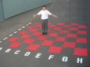 Chess-Checker Board (Large)