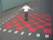 Chess-Checker Board (Large)