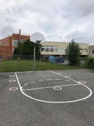 Basketball Shooter (8 Circle)