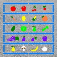 Five a Day! Fruits and Vegetables